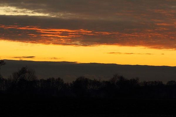 Le 03/12/2011 Lever du soleil à Illhaeusern.( Alsace 68 )