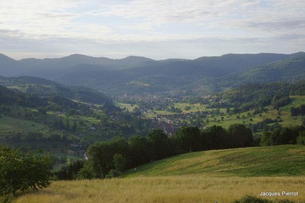 La vallée de Munster.  ( Alsace )