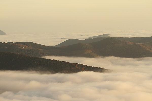 Samedi   26 novembre 2011 Mer du nuage au Hohneck ( Hautes Vosges )