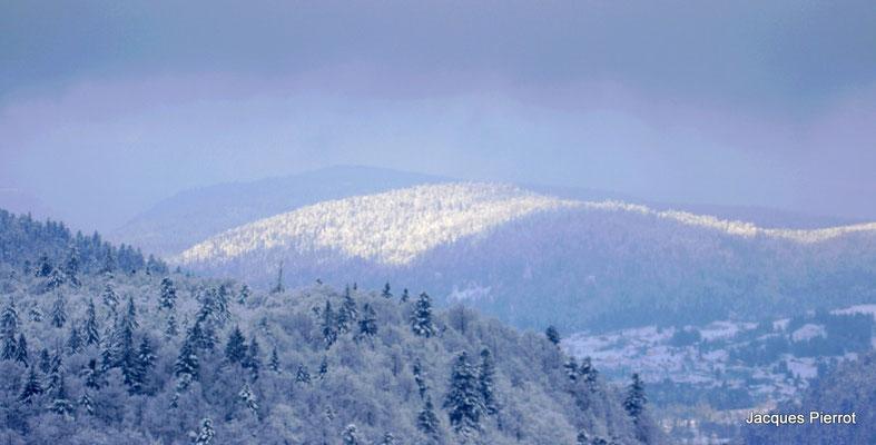 Le 12/11/2016  Forêts partiellement ensoleillées.(Hautes Vosges )