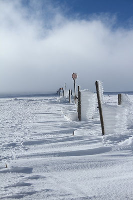 Dimanche 15 janvier 2012  L e Hohneck  (Hautes Vosges )