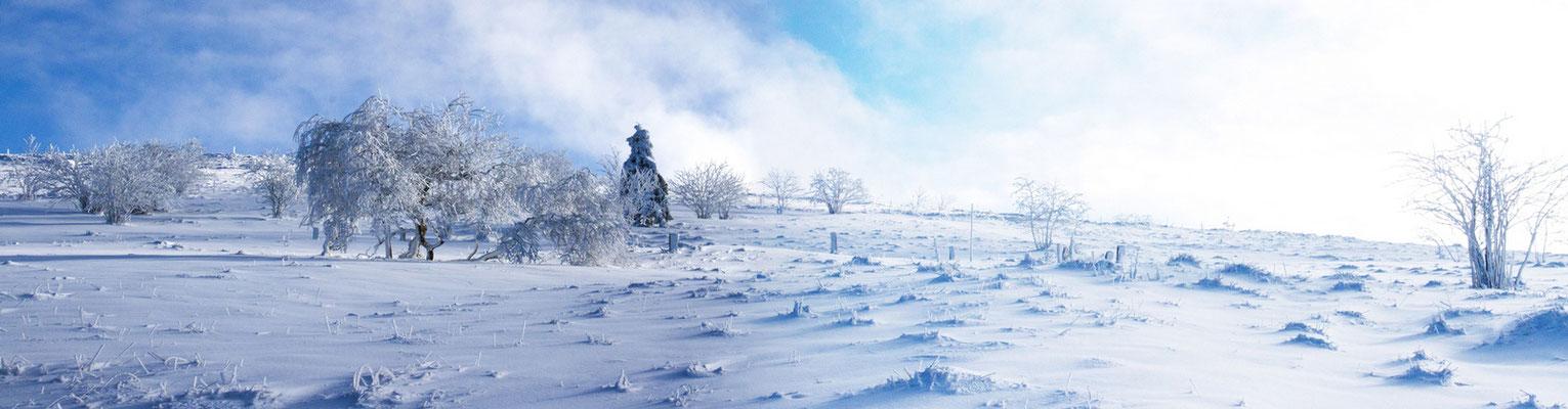 Le 12/11/2016. Lever du soleil au Hohneck (Hautes Vosges)