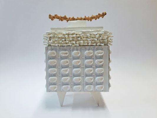 Carola Faller-Barris, Dose, 2020. Porzellan, Modelliermasse, Blisterverpackungen, Holz, Kunststoff, Naturmaterial,  14 x 12.5 x 21.5 cm.