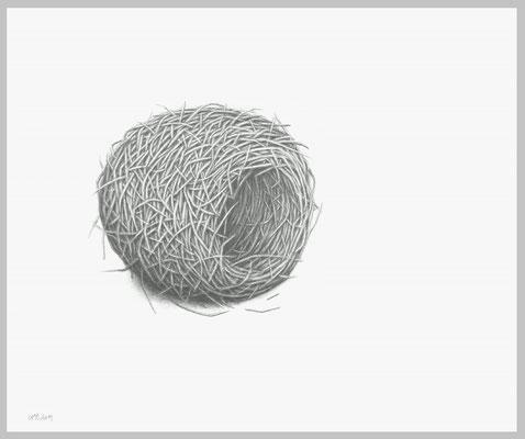 Nest, 2013. Bleistift auf Papier, 60 x 80 cm.