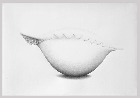 Ohne Titel, 2018. Bleistift auf Papier, 70 x 100 cm.