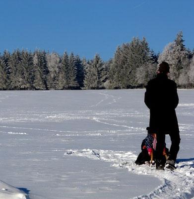 Wiesemit Schnee am Victorhof