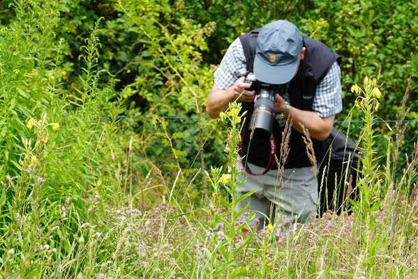 Abgetaucht ins Grün und versunken in die Fotografie (Foto: Meike Kempermann)