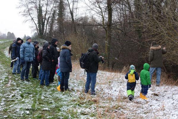 Thomas Wolf führt die Gruppe zu Biberspuren im Schnee