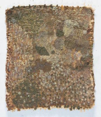 森,26x30 cm,oil on cotton