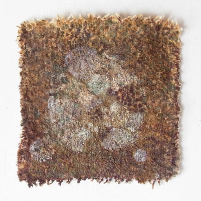 わた,26x26 cm,oil on cotton