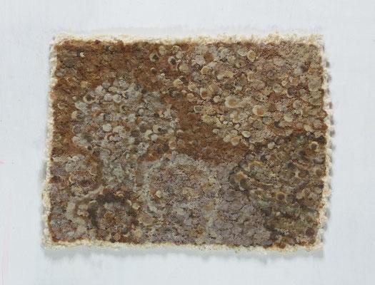 無題,26 x 30 cm,oil on cotton