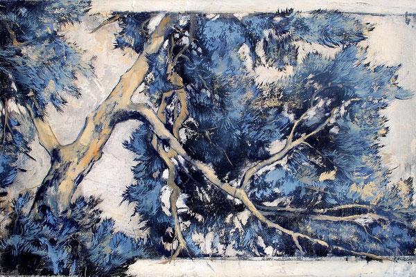 Pinie, 2009, Öl auf Leinwand, 40 x 60 cm