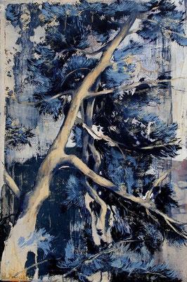 Pinie, 2009, Öl auf Leinwand, 60 x 40 cm