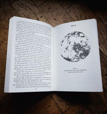Wolf, Wölfe, Buch, Bücher, Buch Wolf, Bücher Wölfe, Buch Wölfe, Wolfsbuch, Wolfbuch, Wolfroman, Roman, Historischer Roman, Historische Fantasy, Bestseller
