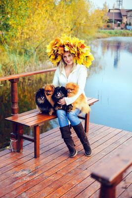 Осень с померанцами. Шпице-семья