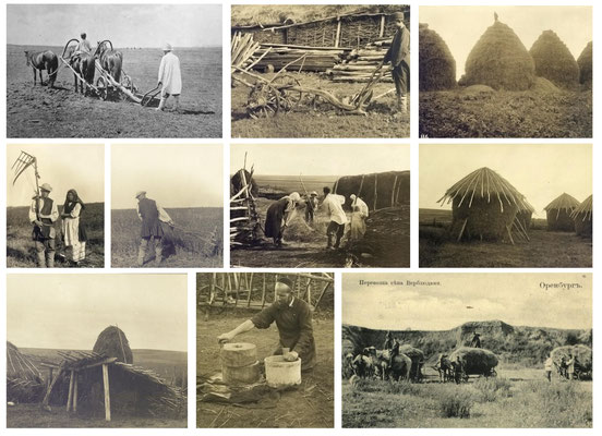 Agriculture et fénaison chez les Bashkirs - Photographie 1909