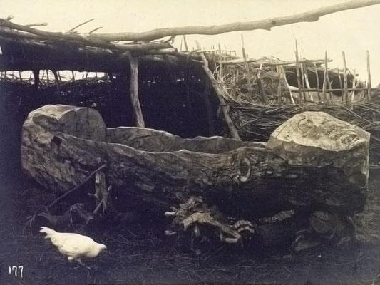 Abreuvoir en tronc bashkir (photo fin 19e)