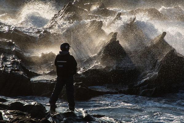 磯釣り師見参  2018年第68回県展【入選】    神奈川県荒崎海岸