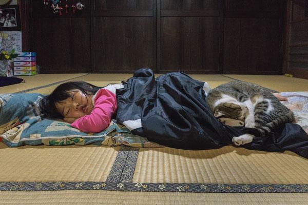 夢の中  第32回埼玉県写真サロン展【奨励賞】      群馬県中之条町