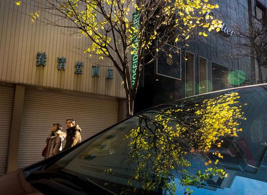 銀座で黄葉  第47回東京都写真展(東京の自然)【特選】 東京都銀座