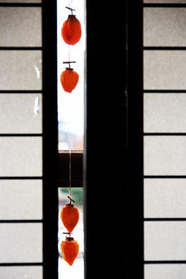 垣間見る味  山梨県枯露柿の里