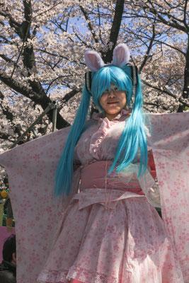 豊満な桜の精 第48回埼玉写壇展・撮影会の部写壇賞    東京都上野公園