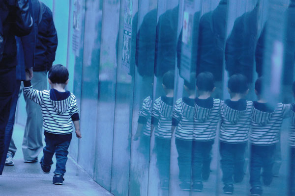 魔法のミラー  2019第55回埼玉写壇展【写壇賞】      東京新宿御苑