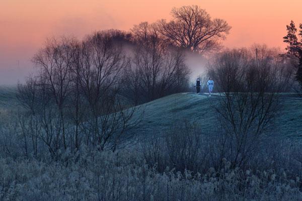 朝霧の中を  第31回埼玉の自然【準特選】         川越市市内