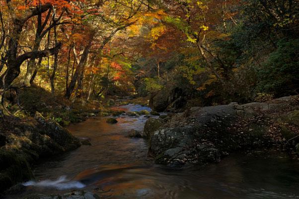 オータムクライマックス  茨木県花貫渓谷