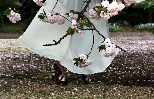 ニューファッション第29回埼玉写真サロン【準特選】  東京都新宿御苑