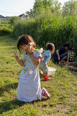 夢見る少女 第52回カラーフェア【東京都本部長賞】  埼玉県川越市