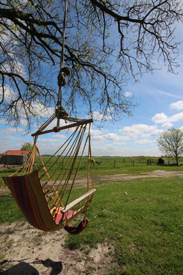 Rund um`s Hofleben auf Oldewurtels Ferienhof - Unsere Hänge-Schaukel
