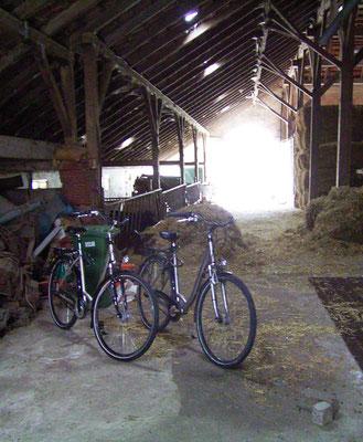 Rund um`s Hofleben auf Oldewurtels Ferienhof - Unsere Fahrräder