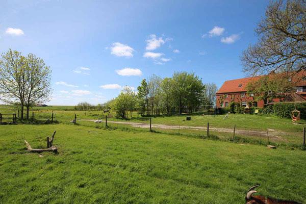 Rund um`s Hofleben auf Oldewurtels Ferienhof