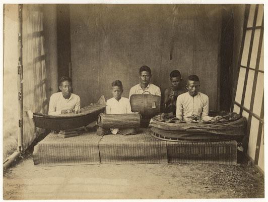 Ensemble pin peat. Source : Cornell University Library