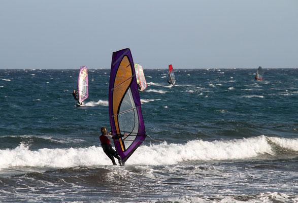 Surfer aller Arten treffen sich in SPO - genau wie in Byron Bay