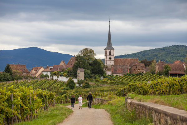 Photos de paysages - Mittelbergheim, village viticole en Alsace - Dominique MAYER - Photographie - www.dominique-mayer.com