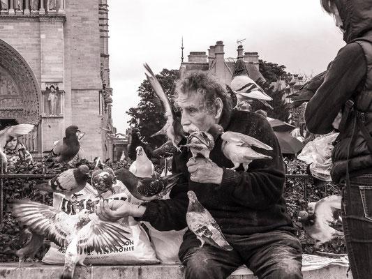 L'homme aux pigeons - #Pigeons à Paris - #NotreDame de Paris - #Architecture de Paris - #Paris - #Photos de Paris - #Paysagesurbains - #Dominique MAYER - www.dominique-mayer.com