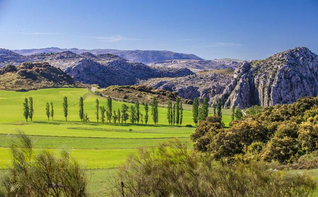 Sierra de Grazalena en Espagne - Photos de nature - Photos de paysage en Espagne - Vacances en Espagne - Dominique MAYER - www.dominique-mayer.com