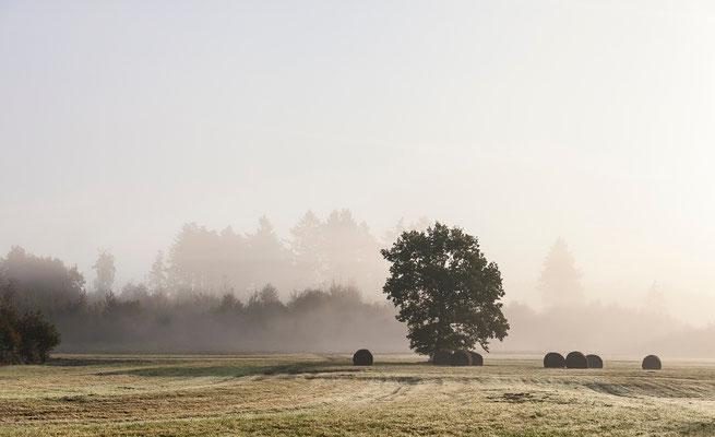 Photos de paysages - Provenchères sur Fave, Vosges - Dominique MAYER - Photographie - www.dominique-mayer.com