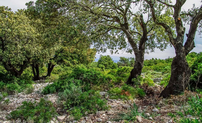 Paysages de sardaigne - Photos de Sardaigne - La Sardaigne - #DominiqueMAYER - www.dominique-mayer.com