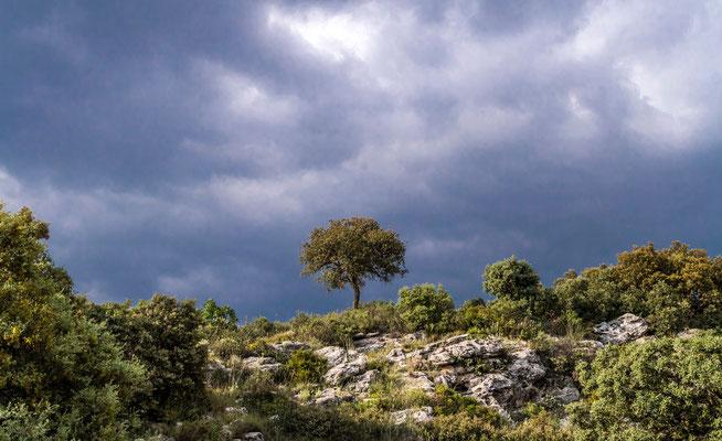 Los Penas de Los Gitanos en Espagne - Site archéologique préhistorique - Site nécrologique préhistorique -  Photos de paysages en Espagne - Vacances en Espagne - Dominique MAYER - www.dominique-mayer.com