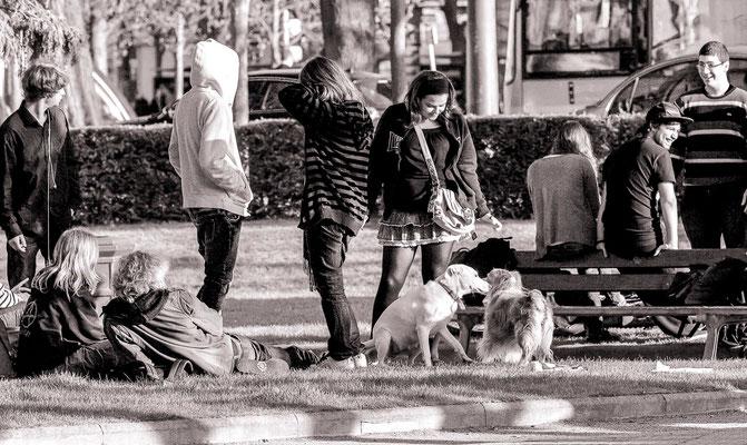 #PlacedelaRépublique - #Strasbourg - #PhotosStrasbourg - #Paysagesurbains - #Photosderues - #DominiqueMAYER - www.dominique-mayer.com