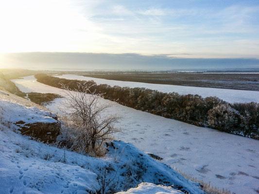 Быстрая Сосна покрыта льдом