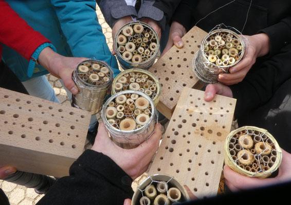 Foto: Wildbienen Nisthilfen, Maria Ruland