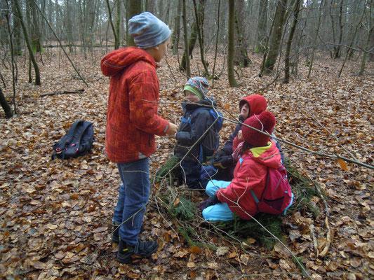 Foto: Wald entdecken, H. Walter