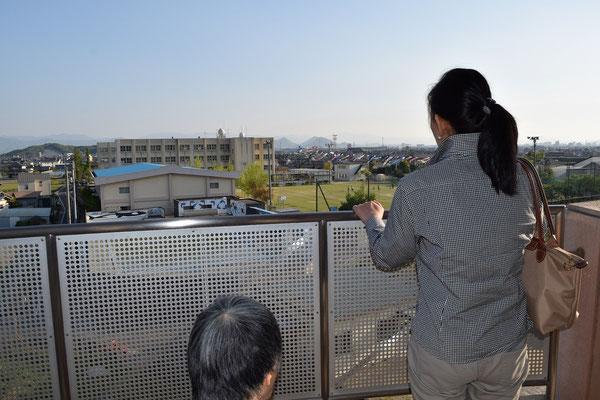 幸子さんの視点からだとフェンス越しの鯉のぼりかな。でも、本当に素敵な鯉のぼりでしたよ。