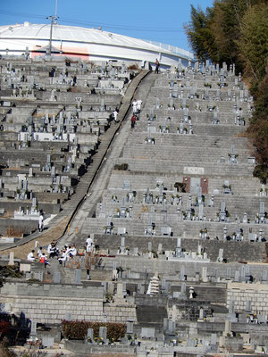 アップロードを忘れておりましたお正月の旭東教会の墓苑がある墓地の様子です。確か、1月4日(木)のお昼頃だったと思います。ご覧頂きたいのは中央の階段付近から一番上にかけての👥🏃です。