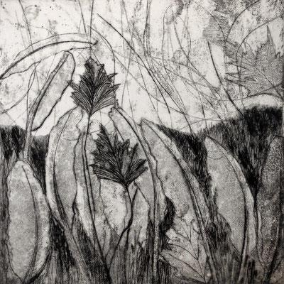 Christel Claudius - gravure - jardin de plume