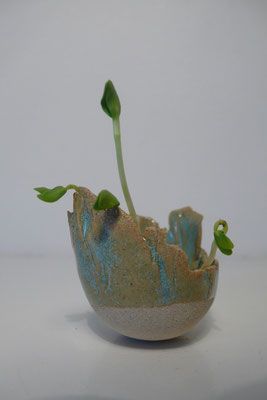 Sophie Gallé-Soas- céramiques